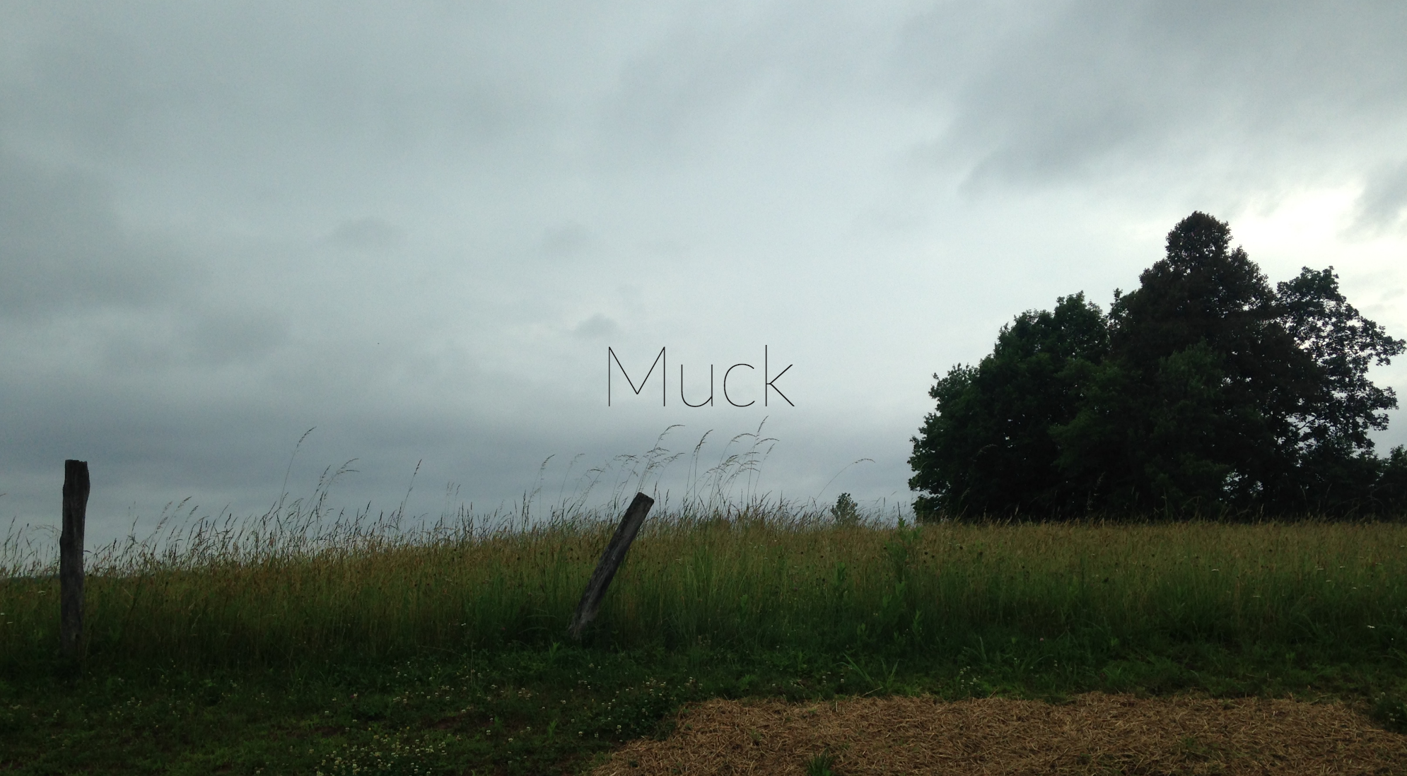 Muck      (web series & podcast)