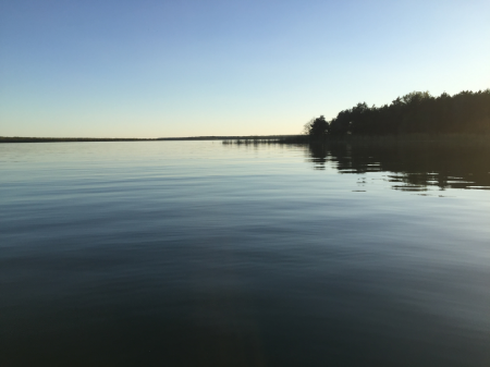 Both mornings I walked to the edge of the pier and saw this. Calm waters, expansive space, tall trees.