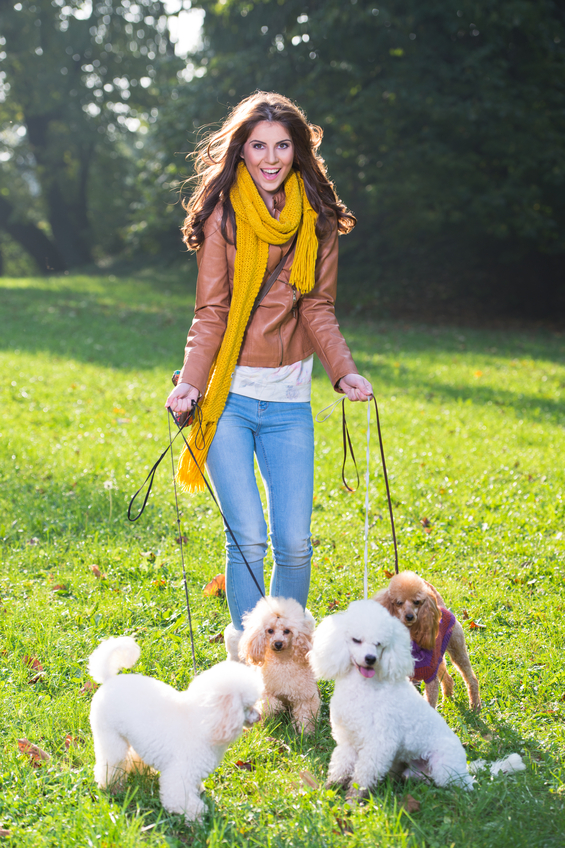Or her. Dog walker / editor would be ideal ...