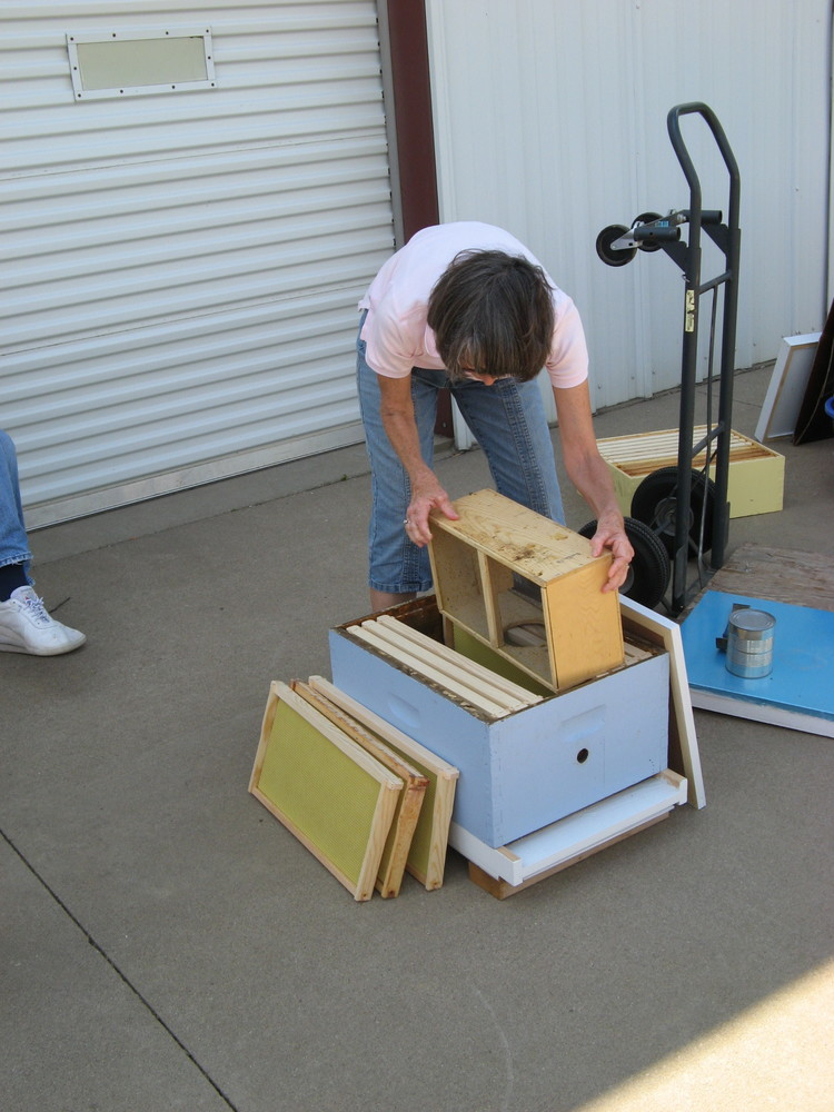 Deb showing us how to build a honey bee hive.