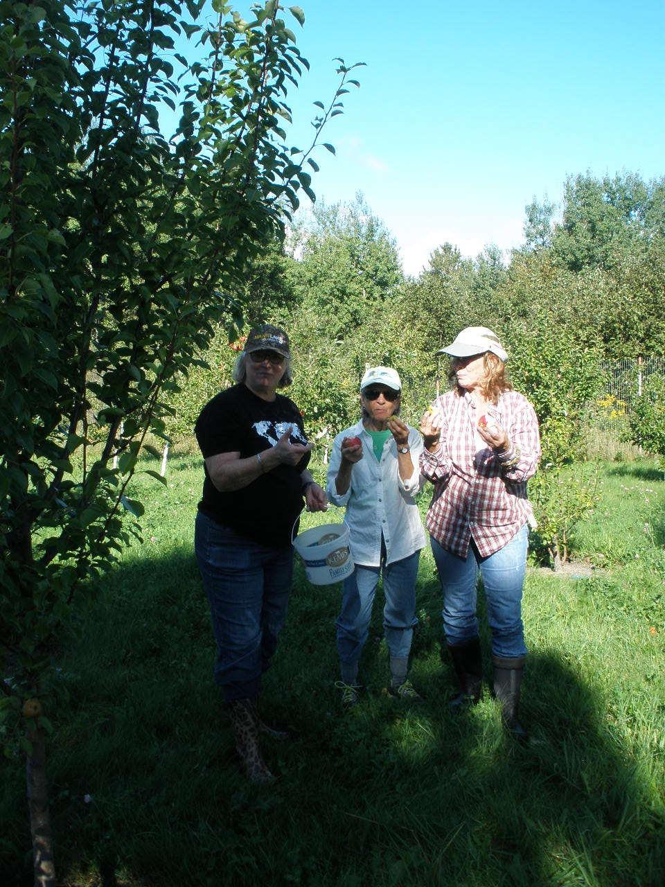 1a Darla Van Heerde, Eileen Schantz-Hansen & Gail Bong - orchard.JPG