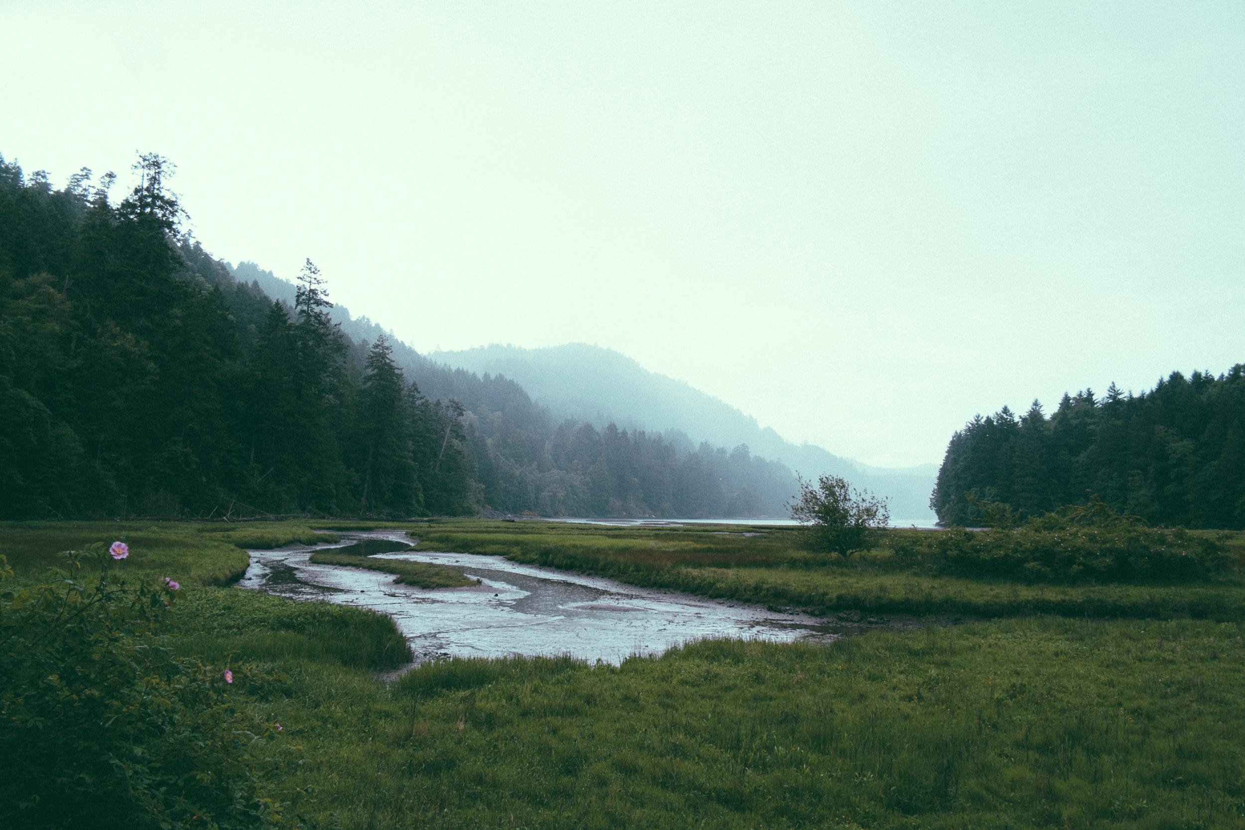 Streams & Wetlands - Magnolia restores streams and wetlands as turn-key projects or as mitigation banks.