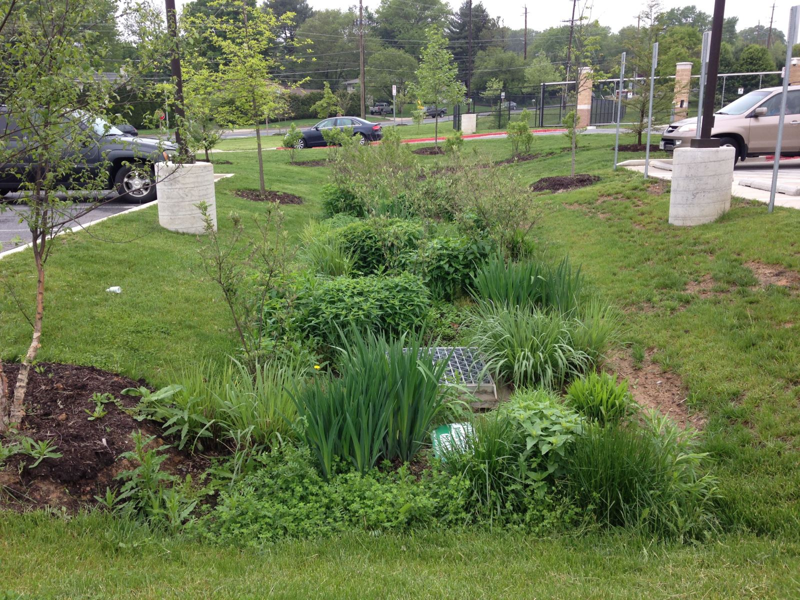 Stormwater Management - Magnolia provides turnkey, end-to-end solution delivery - encompassing land, design, construction, and all monitoring and maintenance necessary to achieve project success.