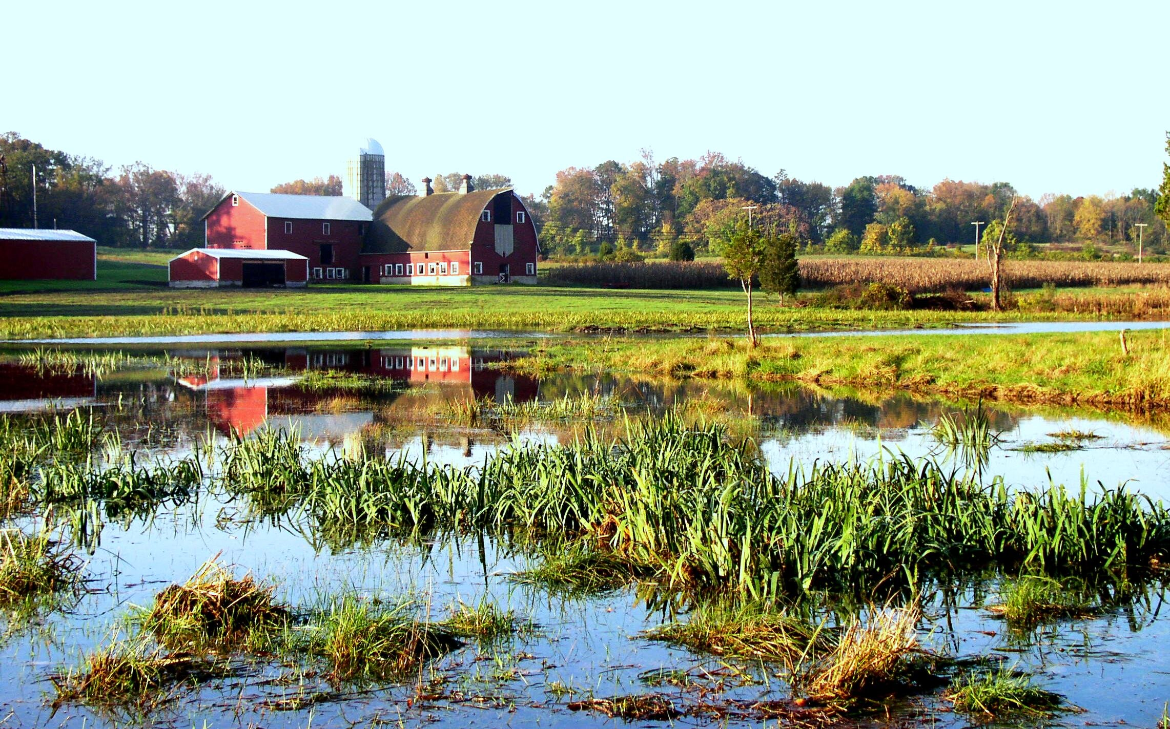 Agricultural Offsets - Magnolia's wetland mitigation banking program helps farmers and ranchers maintain eligibility for other USDA programs.