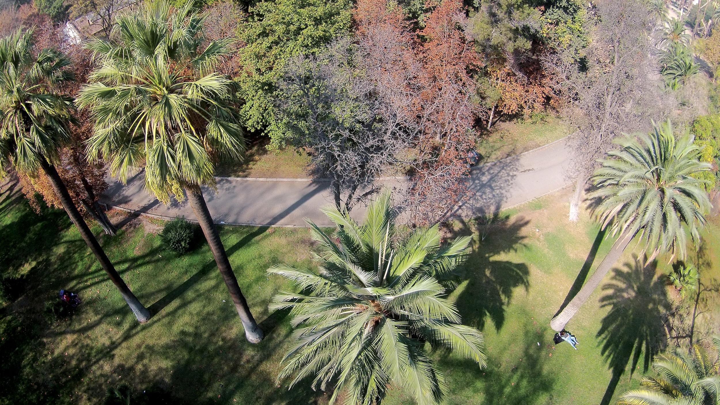 (5)LOF·drone La Quinta Normal de Agricultura 2015.jpg.JPG