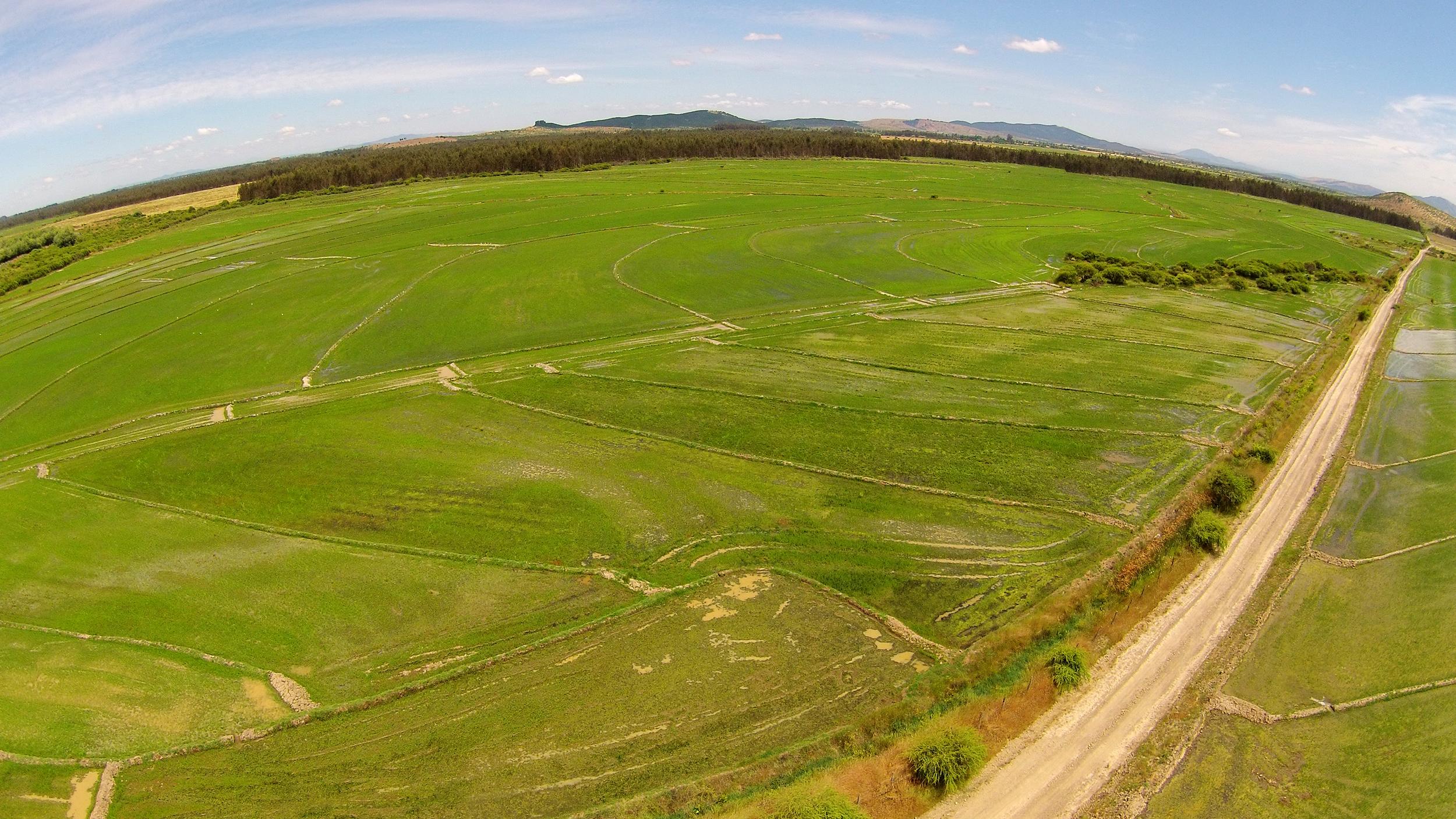 (1) Plantación de Arroz · Retiro, Chile © LOF·drone para  LOFscapes