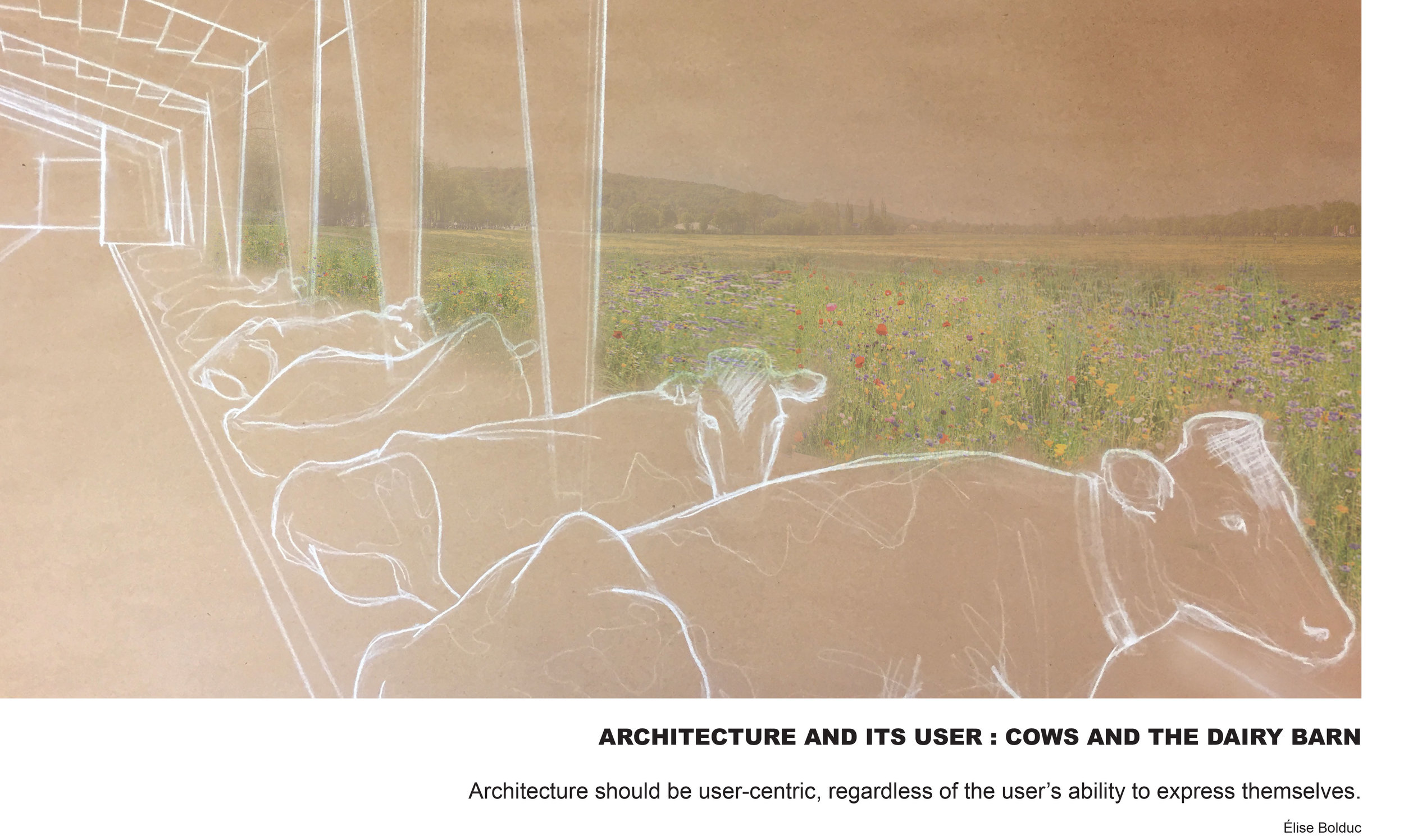 HONOR / UNBUILT STUDENT    Cows and the Dairy Barn    ÉLISE BOLDUC