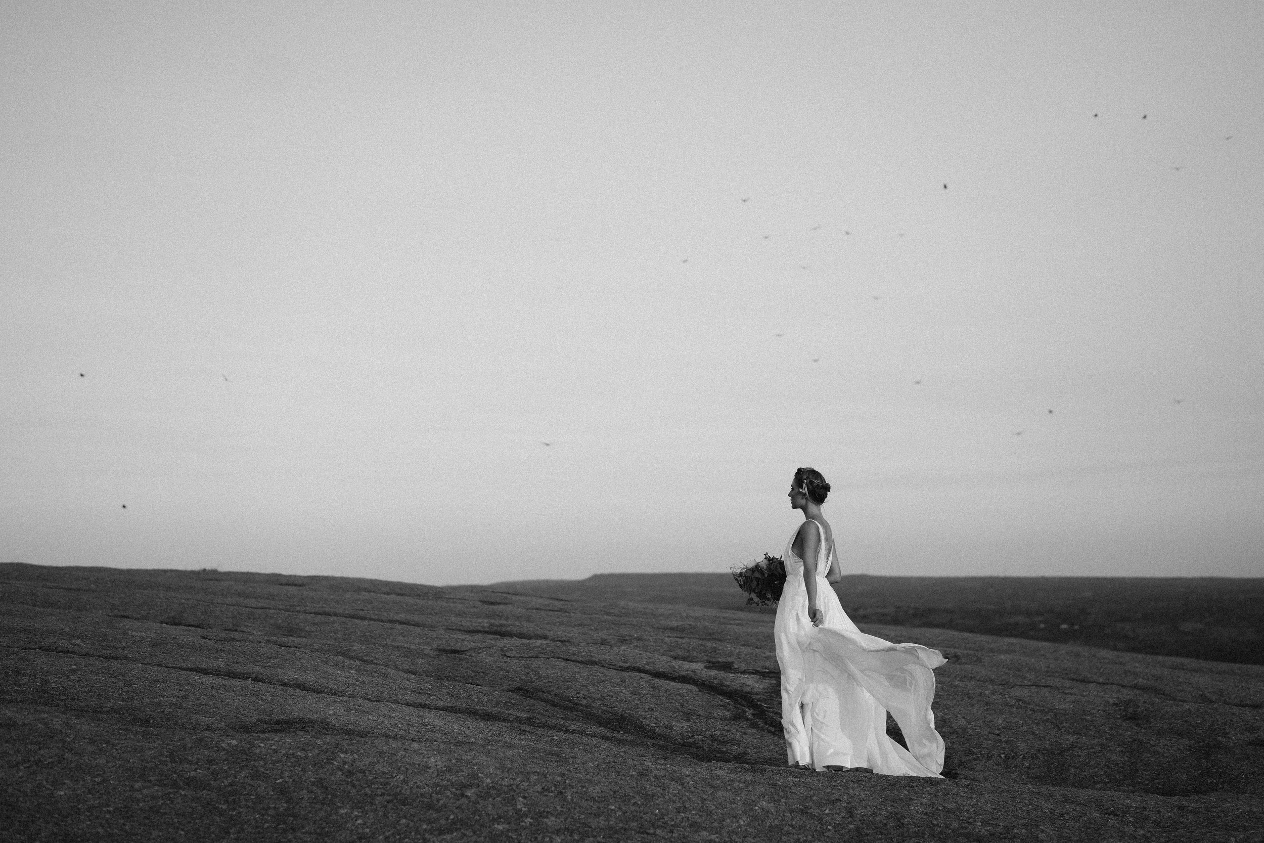 black and white beauty inspired by the birds at enchanted rock