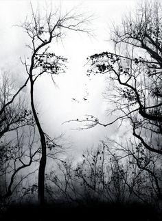 Face To The Sun.jpg