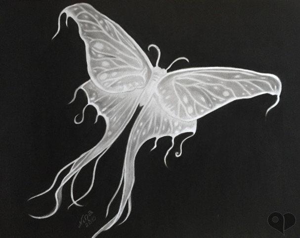 Papillons.jpeg