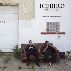 Going and Going and Going (Illvibe Remix) - RJD2 Presents Icebird