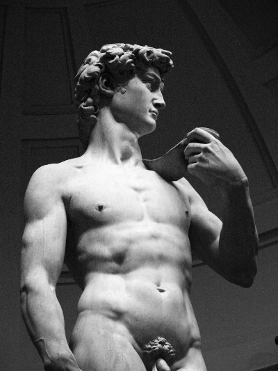 David di Michelangelo, Firenze by  Vincent Garcia  (CC BY-NC-ND 2.0)