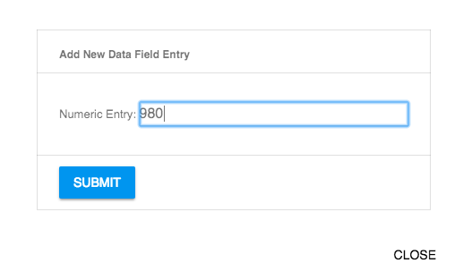 Add New Data Field Entry Form