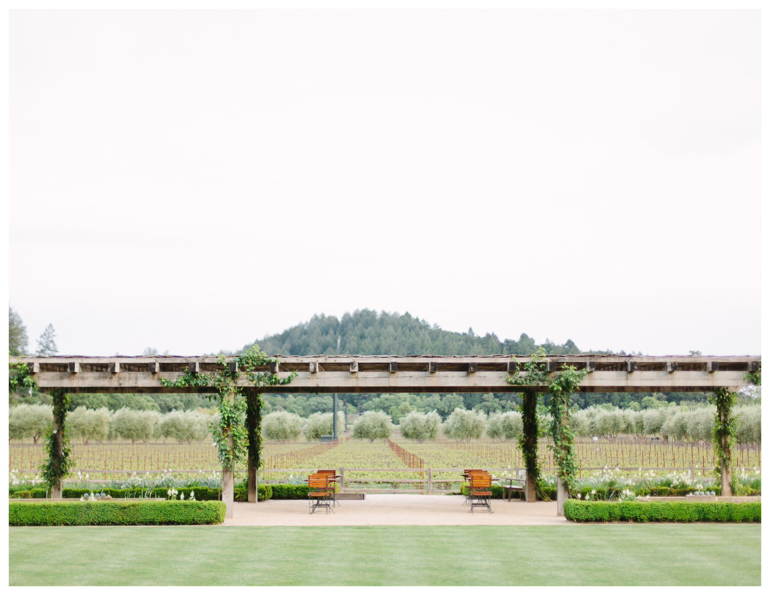 napa valley reserve event 2.jpg