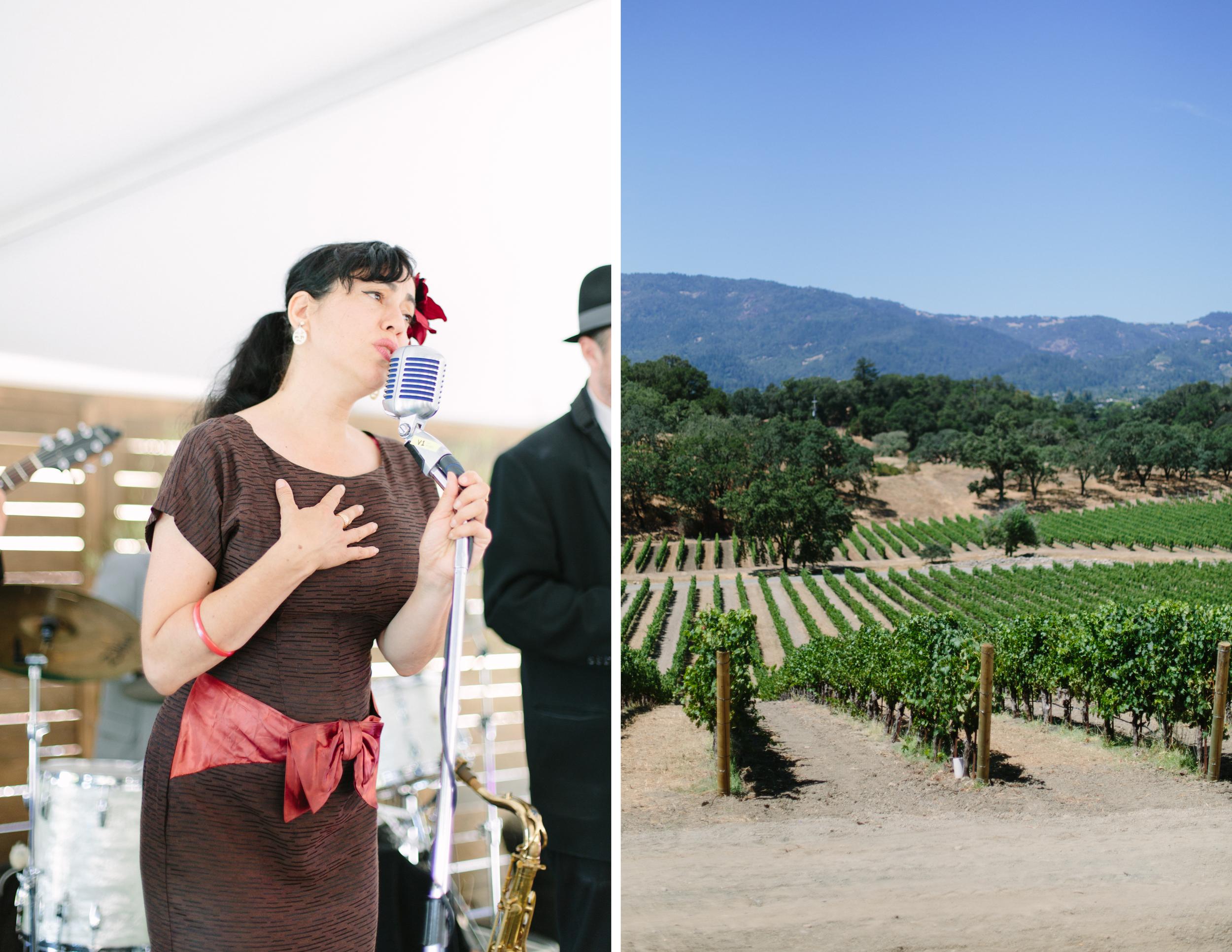 napa valley winery 6.jpg