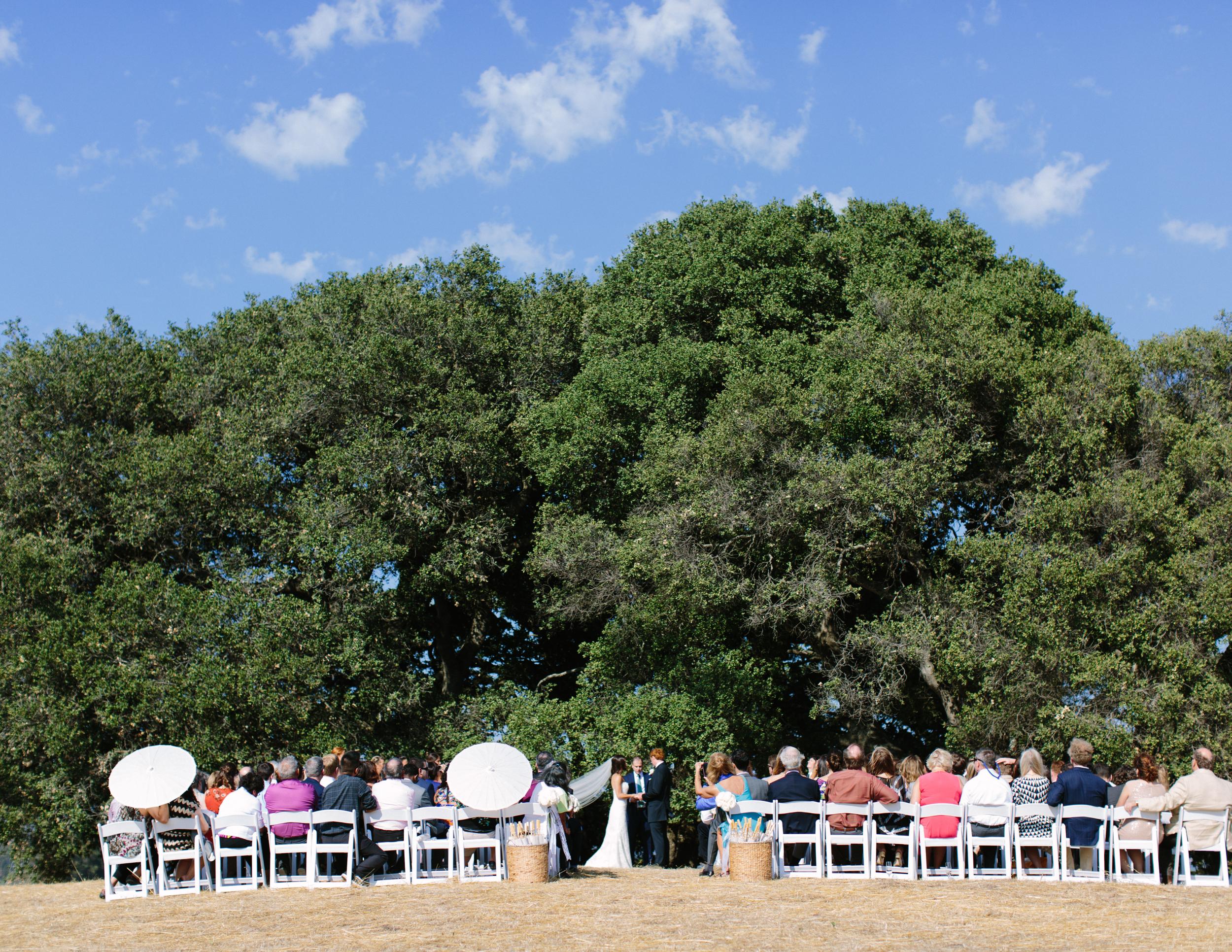 modern sonoma wedding 3.jpg