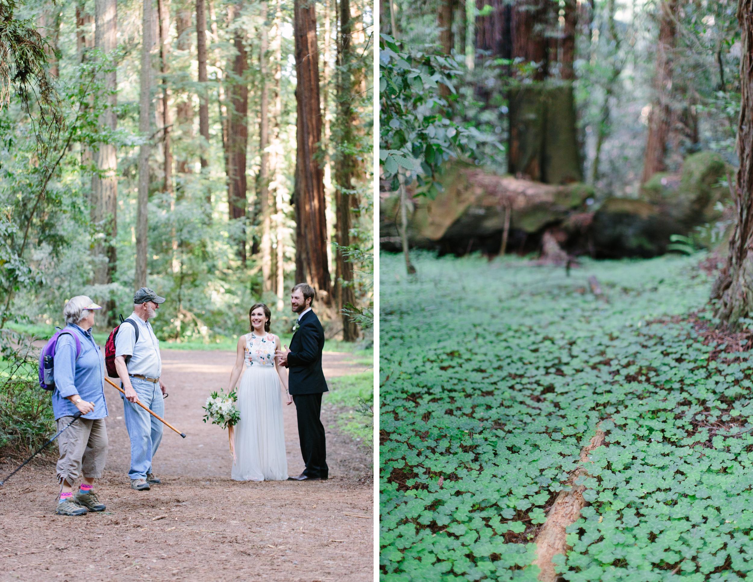 santa cruz forest wedding 7.jpg