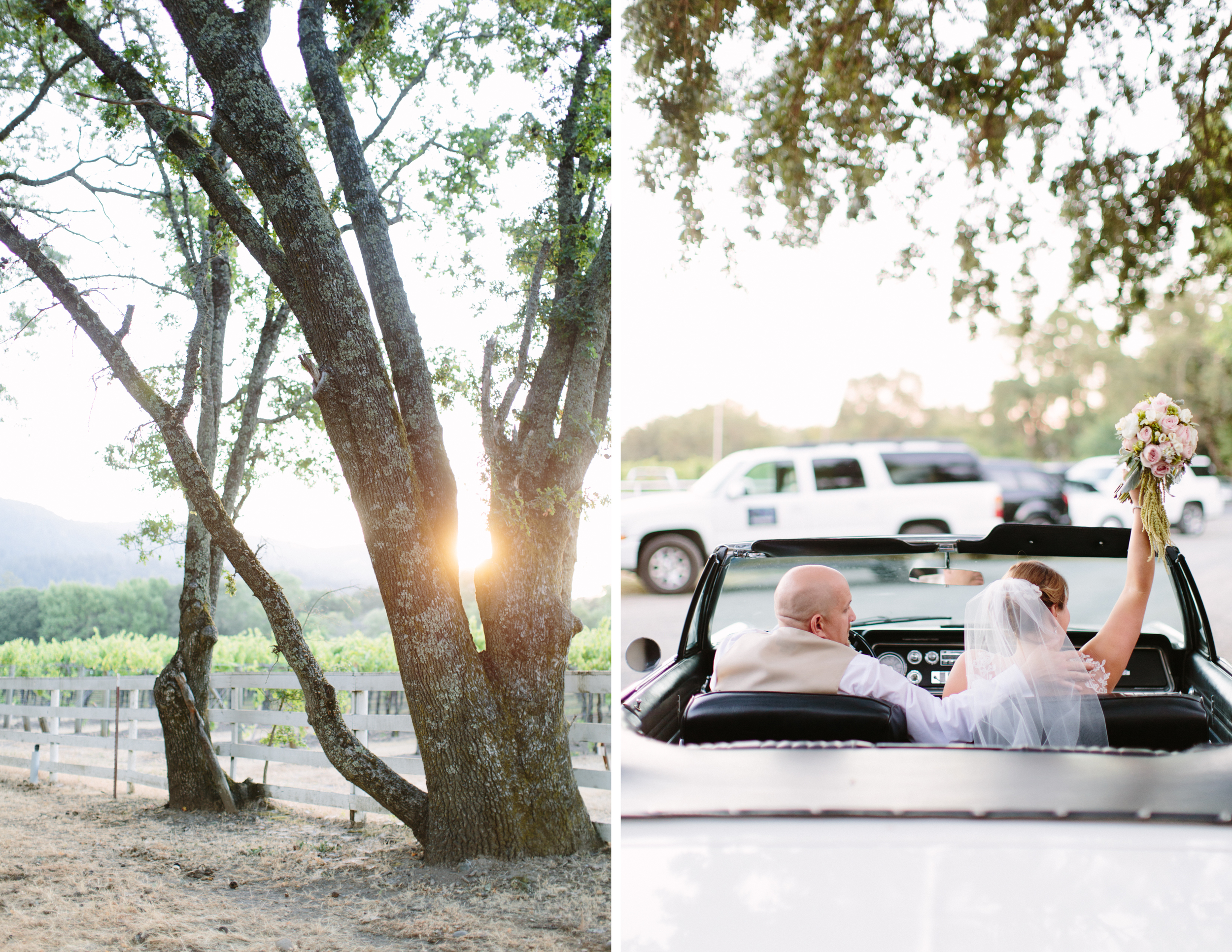 sonoma ranch wedding 13.jpg