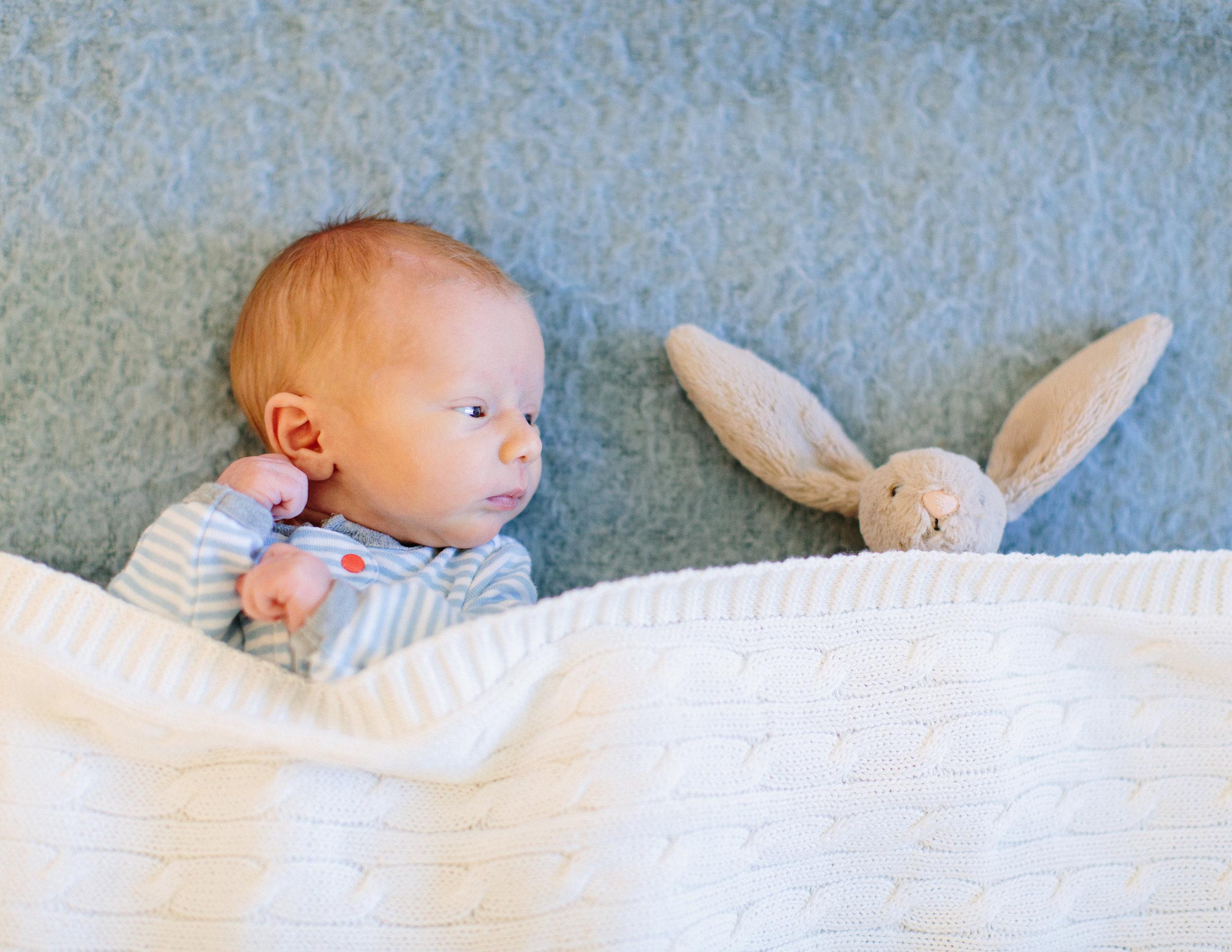 sonoma baby portraits 8.jpg