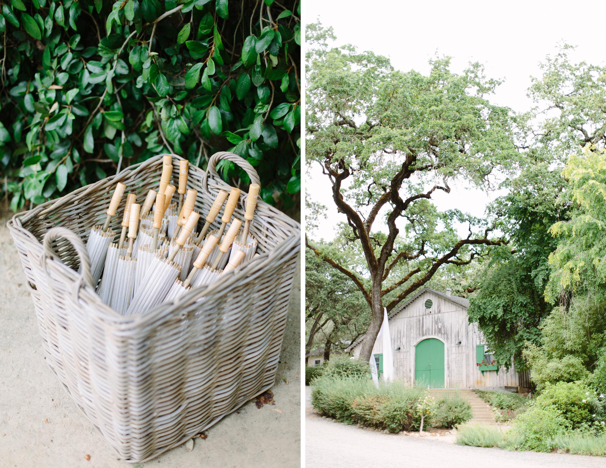 annadel estate winery wedding 5.jpg