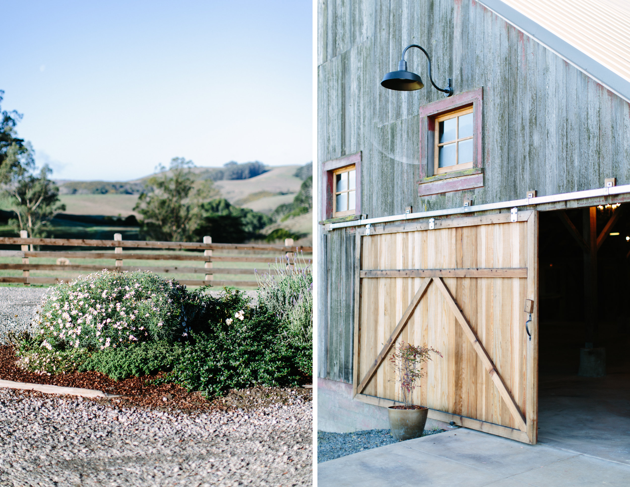 the haven at tomales wedding 2.jpg
