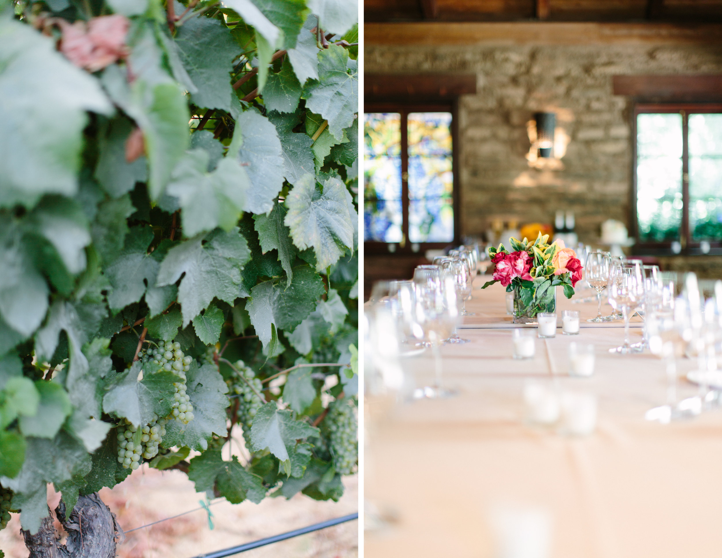 cline cellars intimate wedding 14.jpg