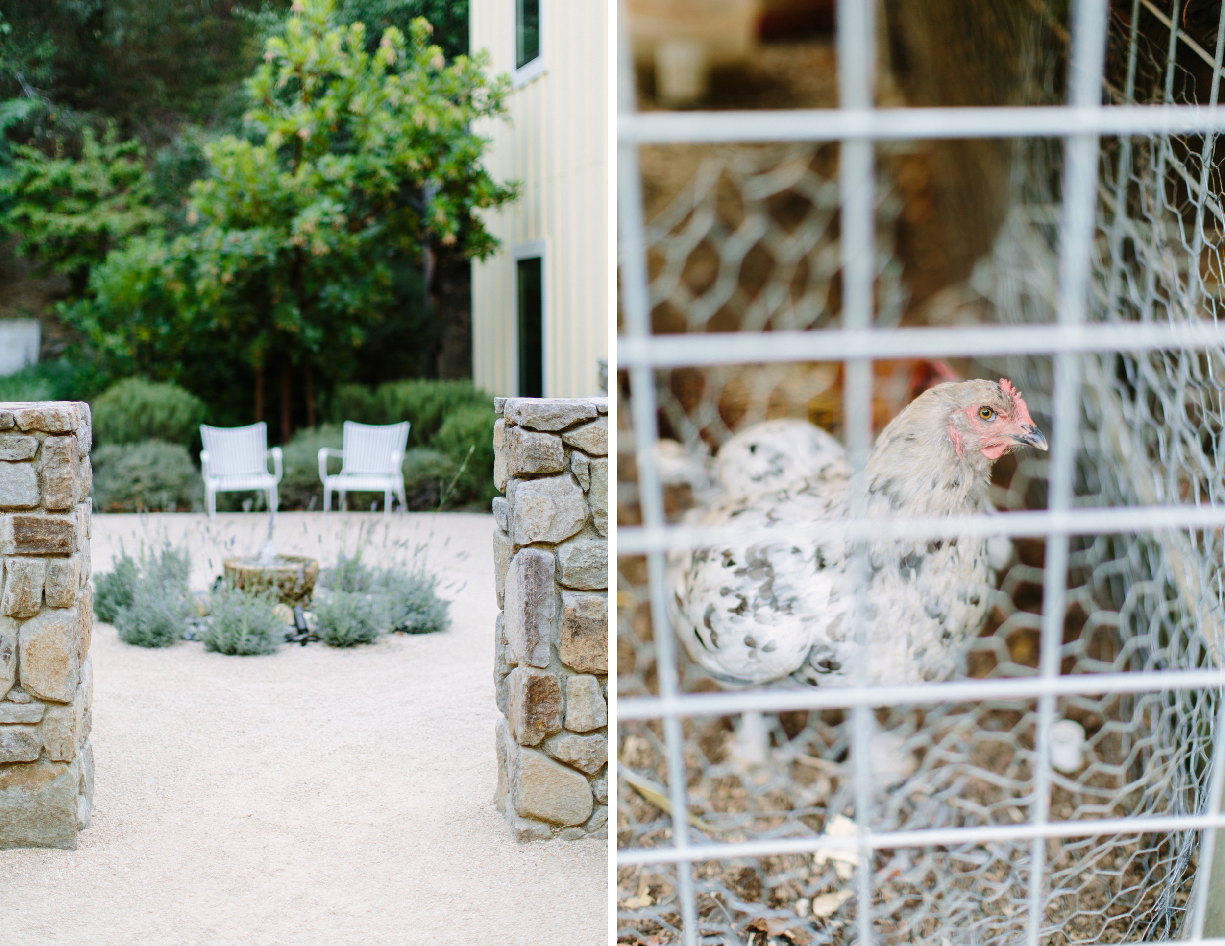 farmhouse inn sonoma elopement 3.jpg
