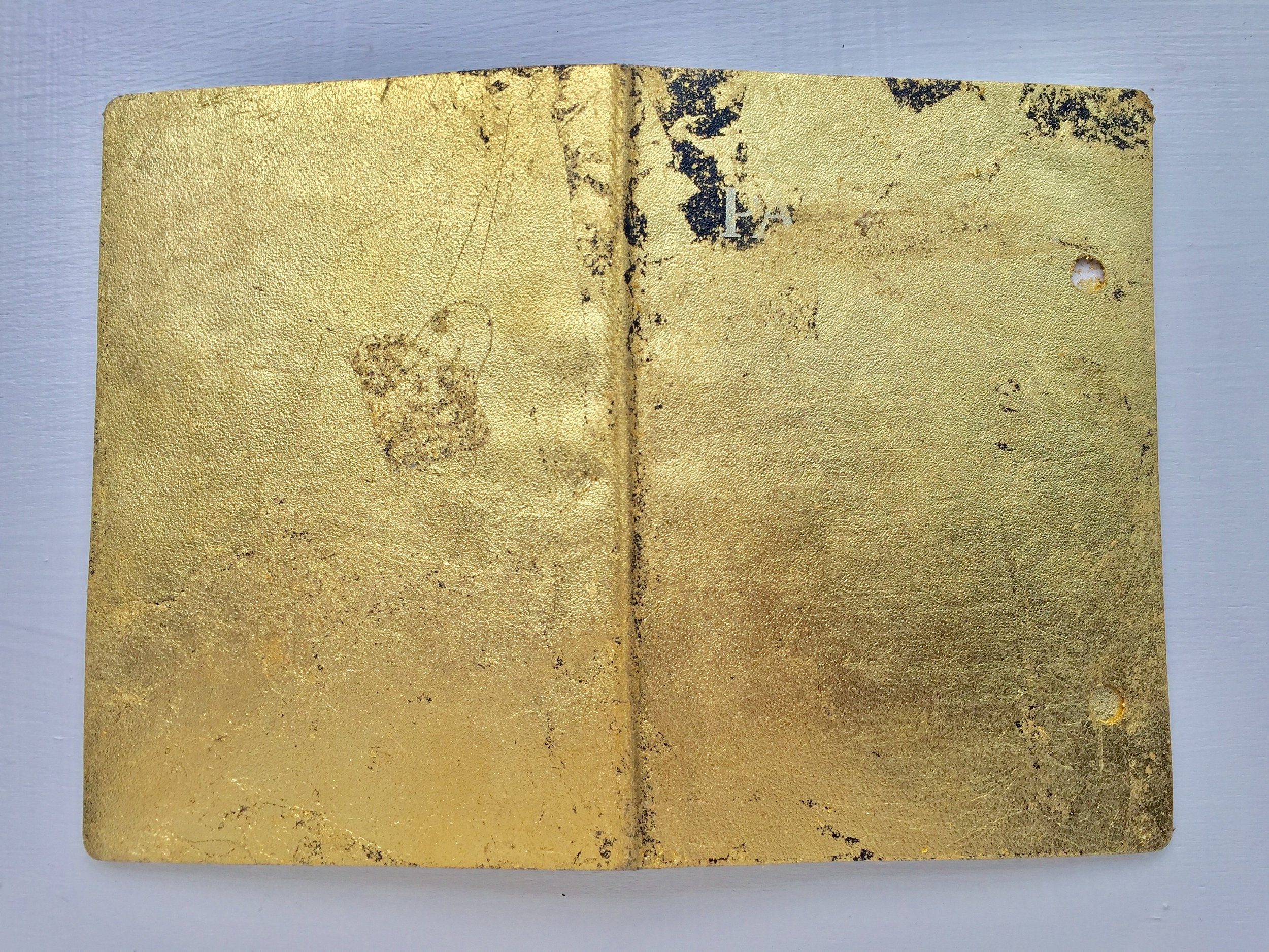 Cover1_golden passport.jpg