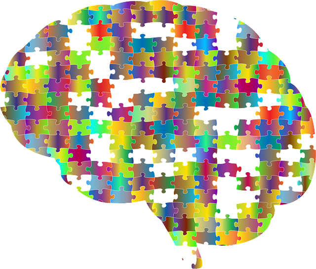 brain-2750453_640.png