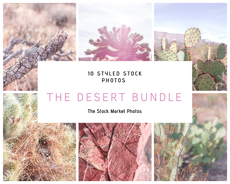 Desert Styled Stock Photo bundle.png