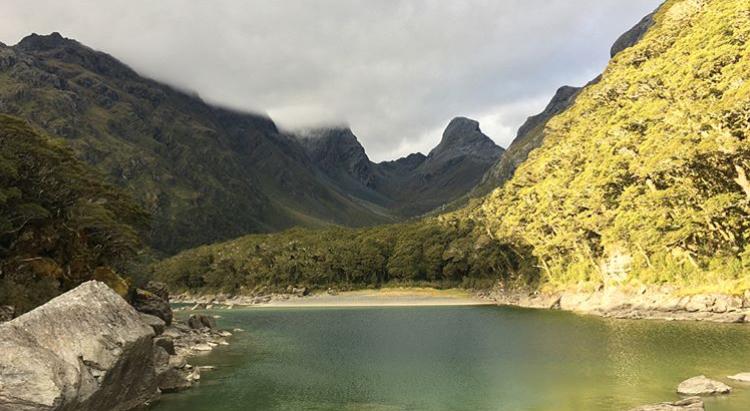 NZ 1.jpg