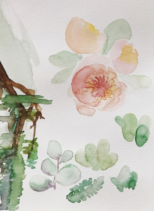 original watercolor vignettes of suite elements - Succulents and florals became a strong part of the suite. Later, these paintings are scanned and digitized to create different compositions.