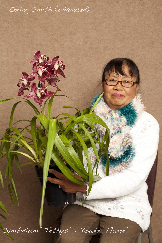 MAP orchids_MG_9912v.5.jpg