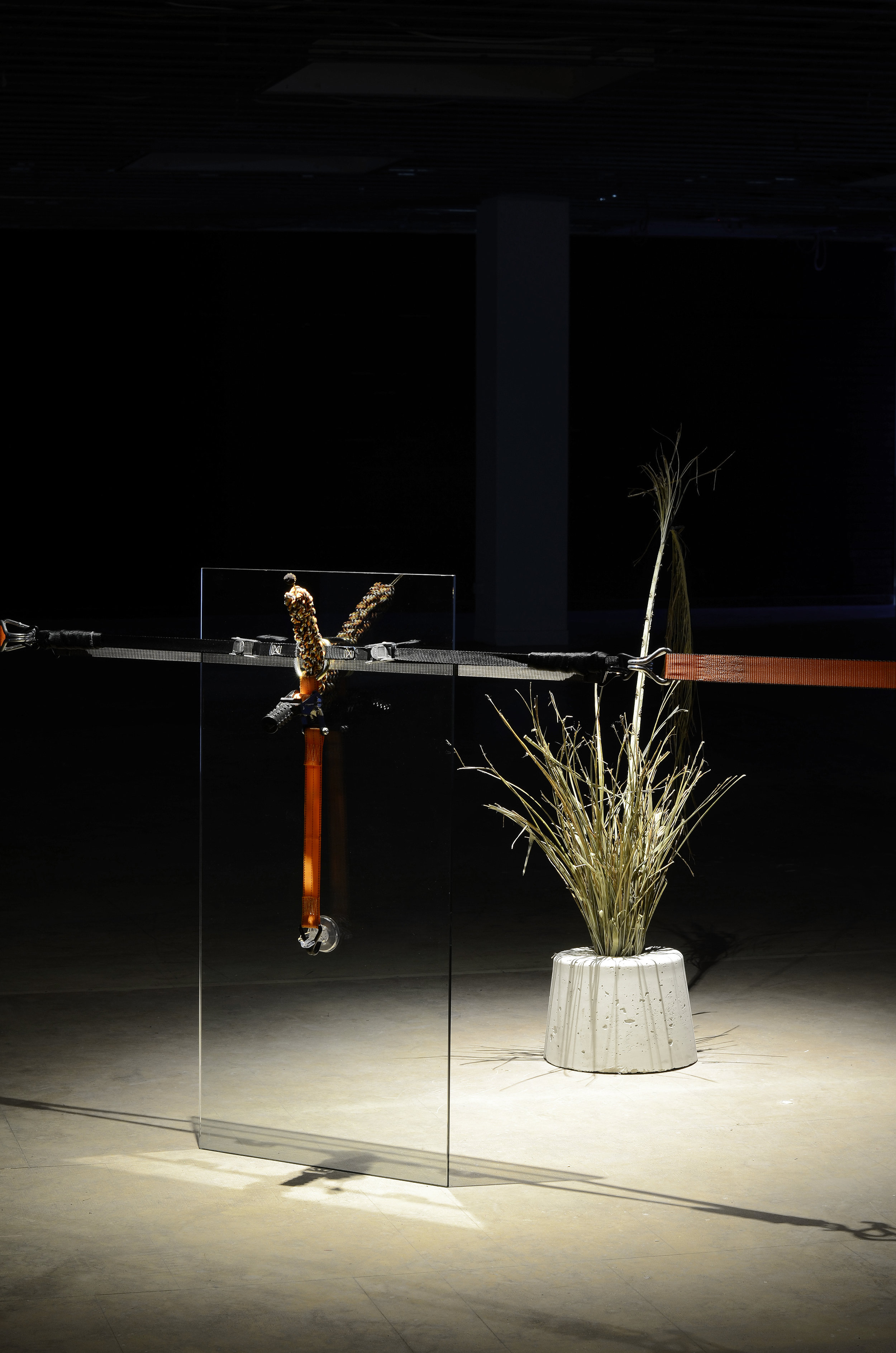 Anna McMahon,  Untitled # 6  from the series  There's no easy way to say this , 2016, glass, elastic tie down, three way tie down, leucadendron, dog toy, clear suction hook, palm, concrete bolster, installation view, dimensions variable. Image courtesy of Success. Photography: Dan McCabe