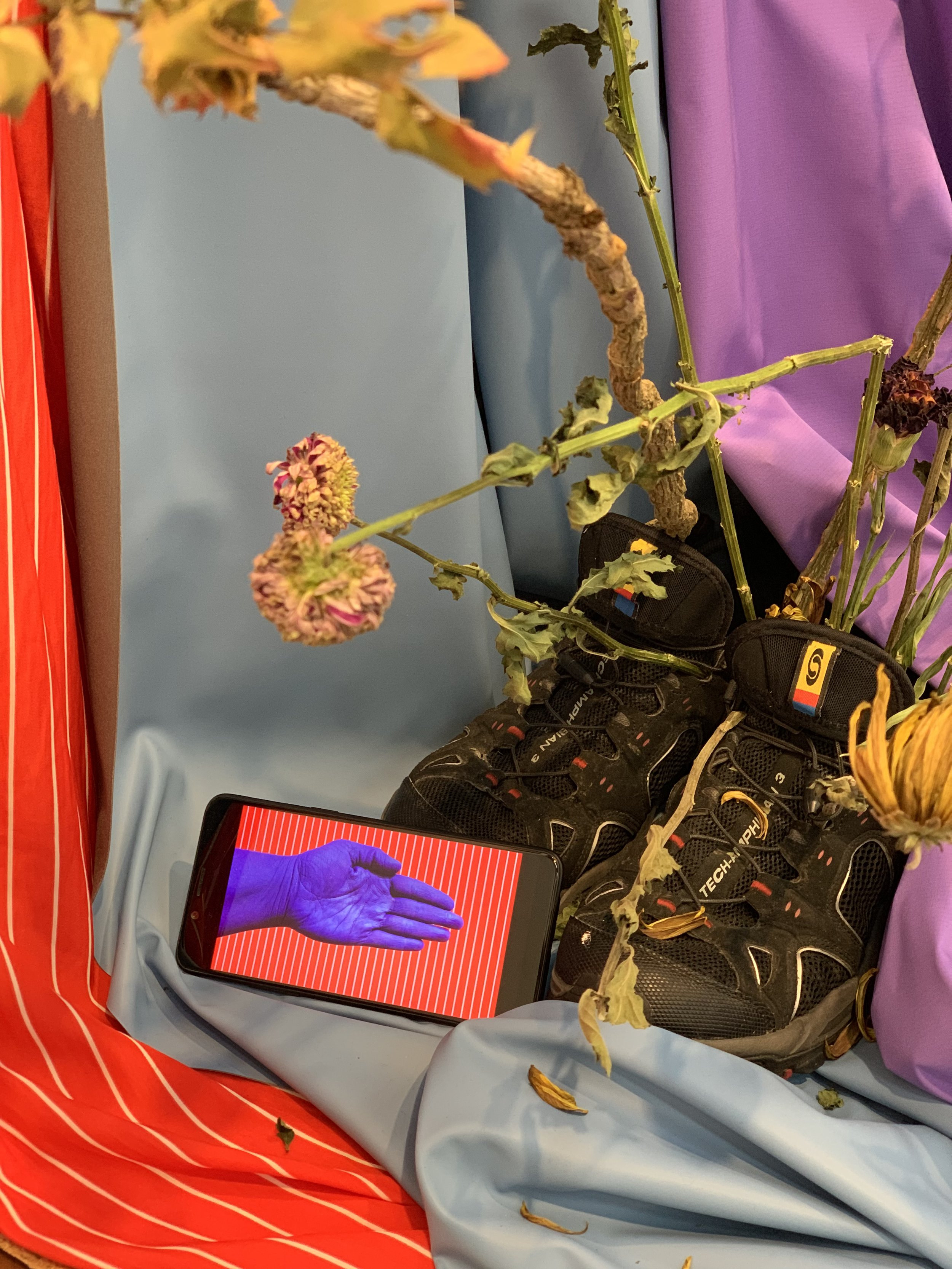 A misunderstanding of what it means to be tender , 2018, Fabric, flowers (chrysanthemum, carnation, holly), leather, whip, shoes, nipple tassel, kenzan, flower net, sansevieria cylindrica, small phone screen playing video of the same title, tv monitor playing video of same title. Commissioned by Move Arts Japan for exhibition at 3331 Arts Chiyoda Gallery, Tokyo, Japan.