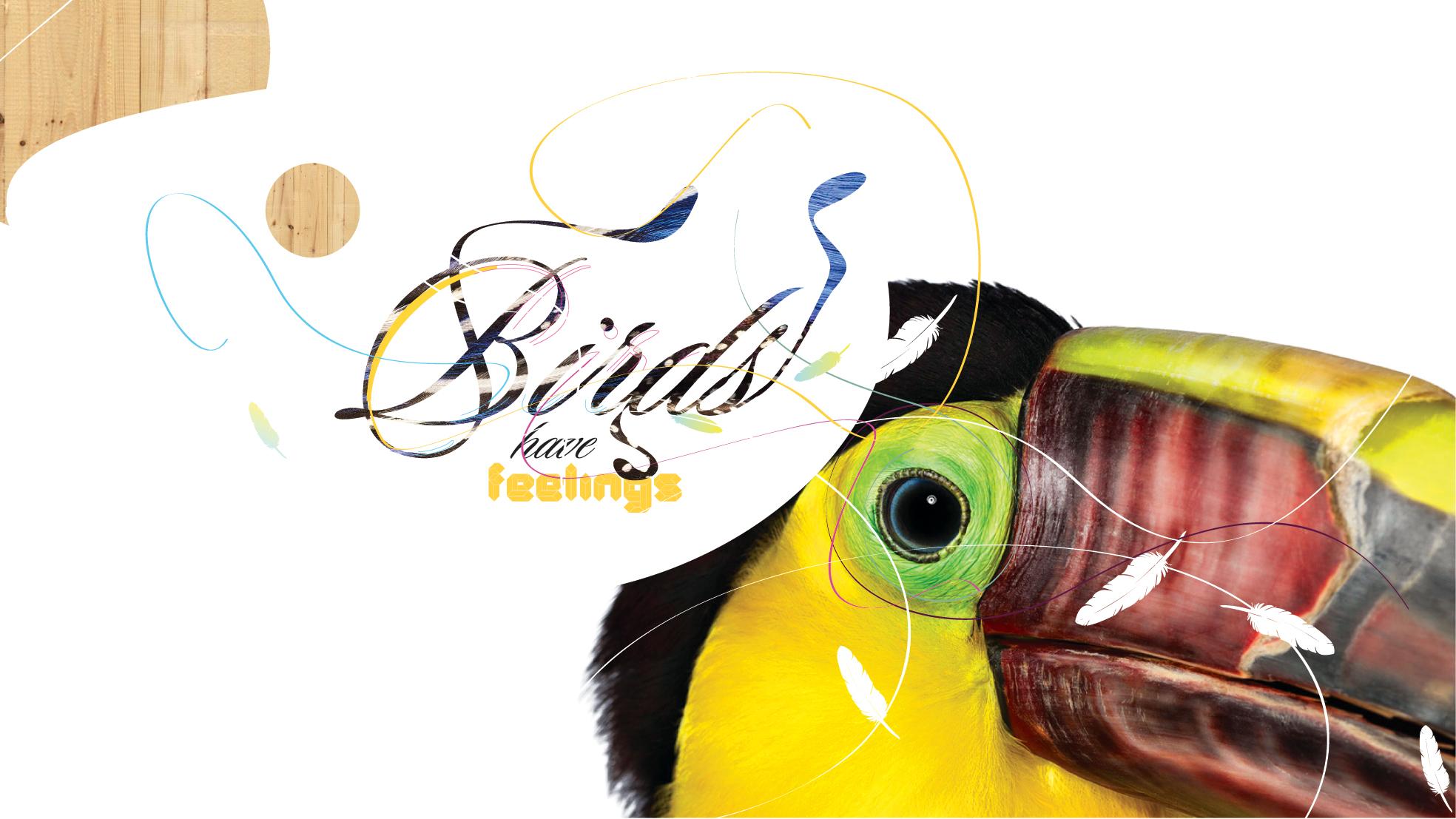 BIRDS_10.jpg