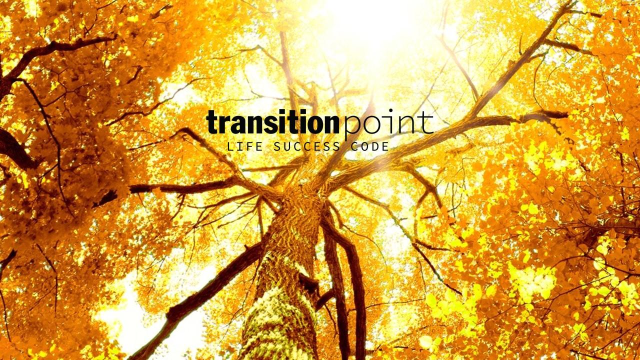 transition_point_remove-the _blocks_future_success