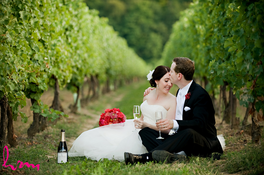 Beautiful Niagara wedding photo of Toronto newlyweds sitting amongst the grapevines