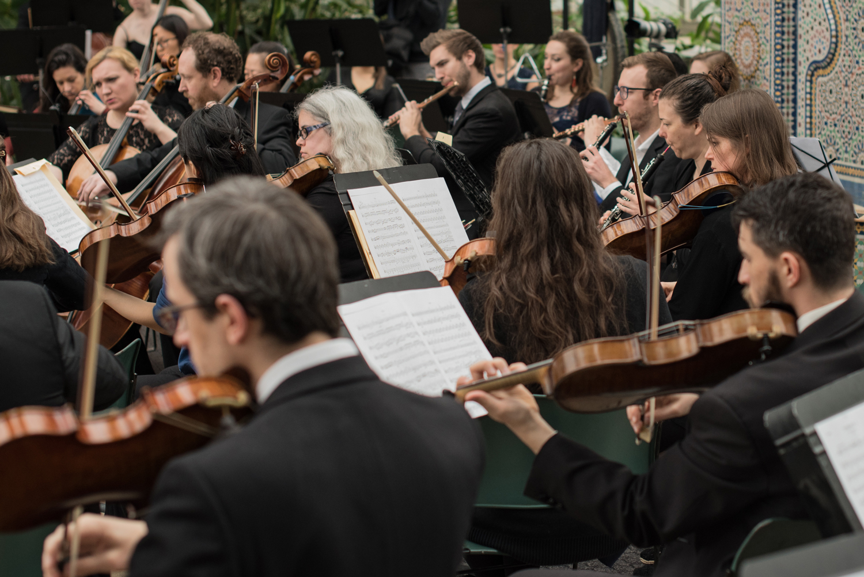 The Oistrakh Symphony of Chicago. Photo by Johnny Nevin