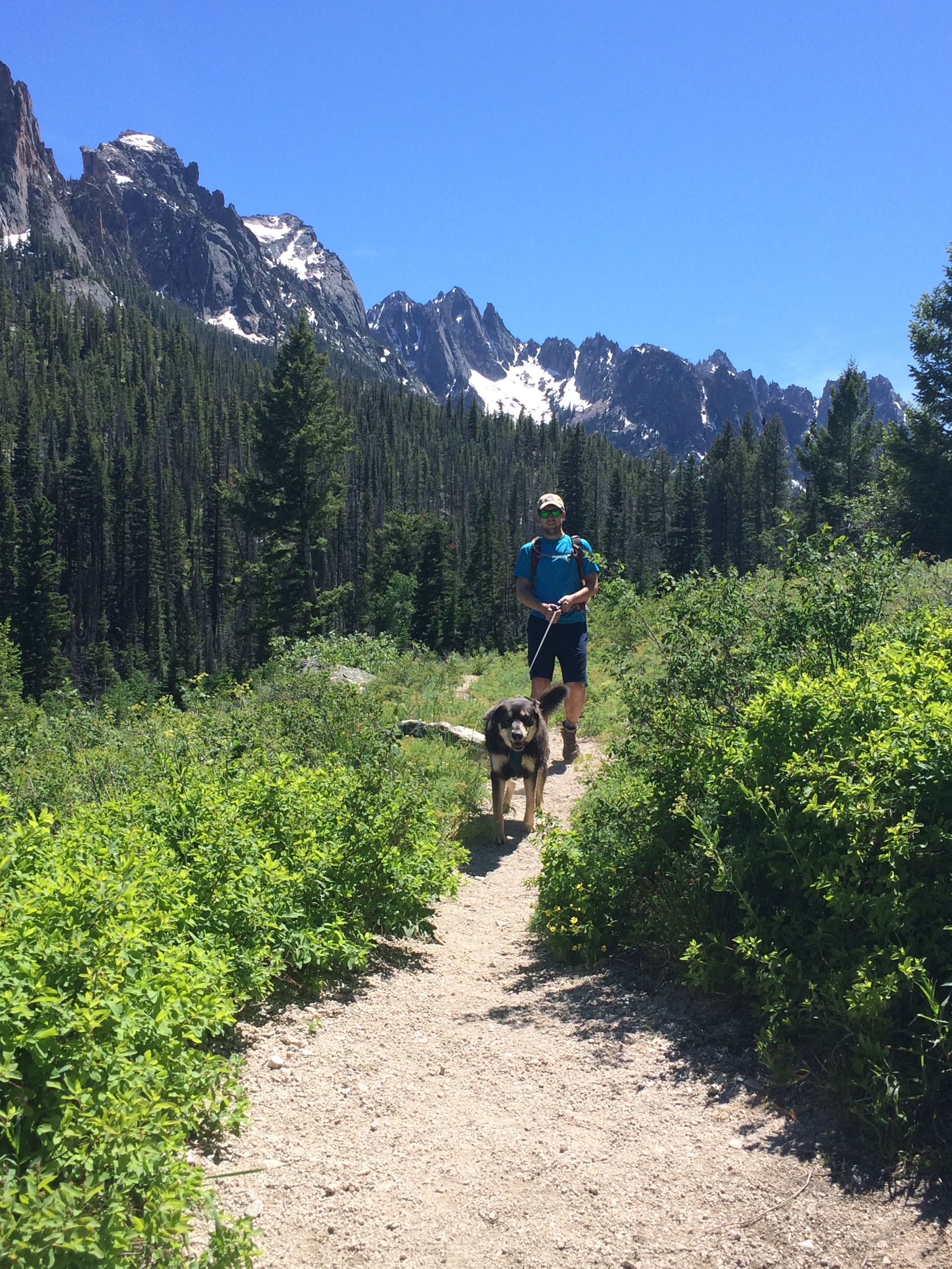 The Sawtooths are absolutely stunning and dog friendly