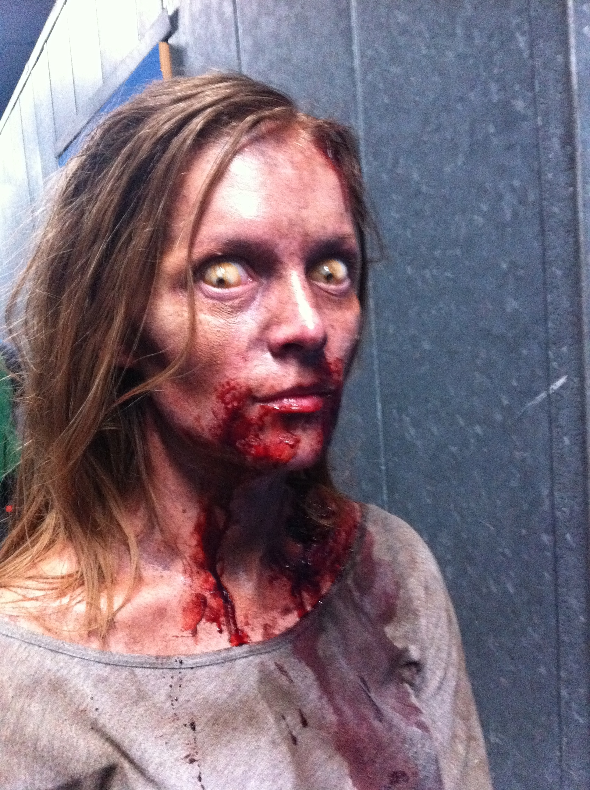 I did this make-up on Howard Berger's (Co-Owner of KNB which does make-up effects for Walking Dead TV show) wife Miriam. This was for a Walking Dead webisode last year.