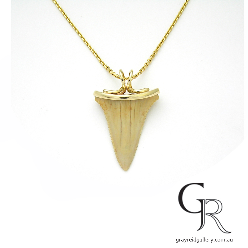 Shark Tooth Necklace Melbourne Gray Reid Gallery.jpg