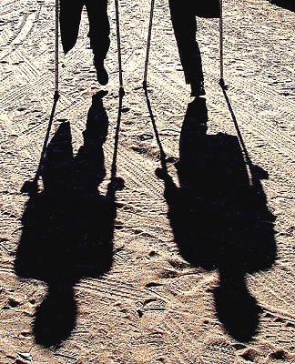 Landmines taking heavy toll on population