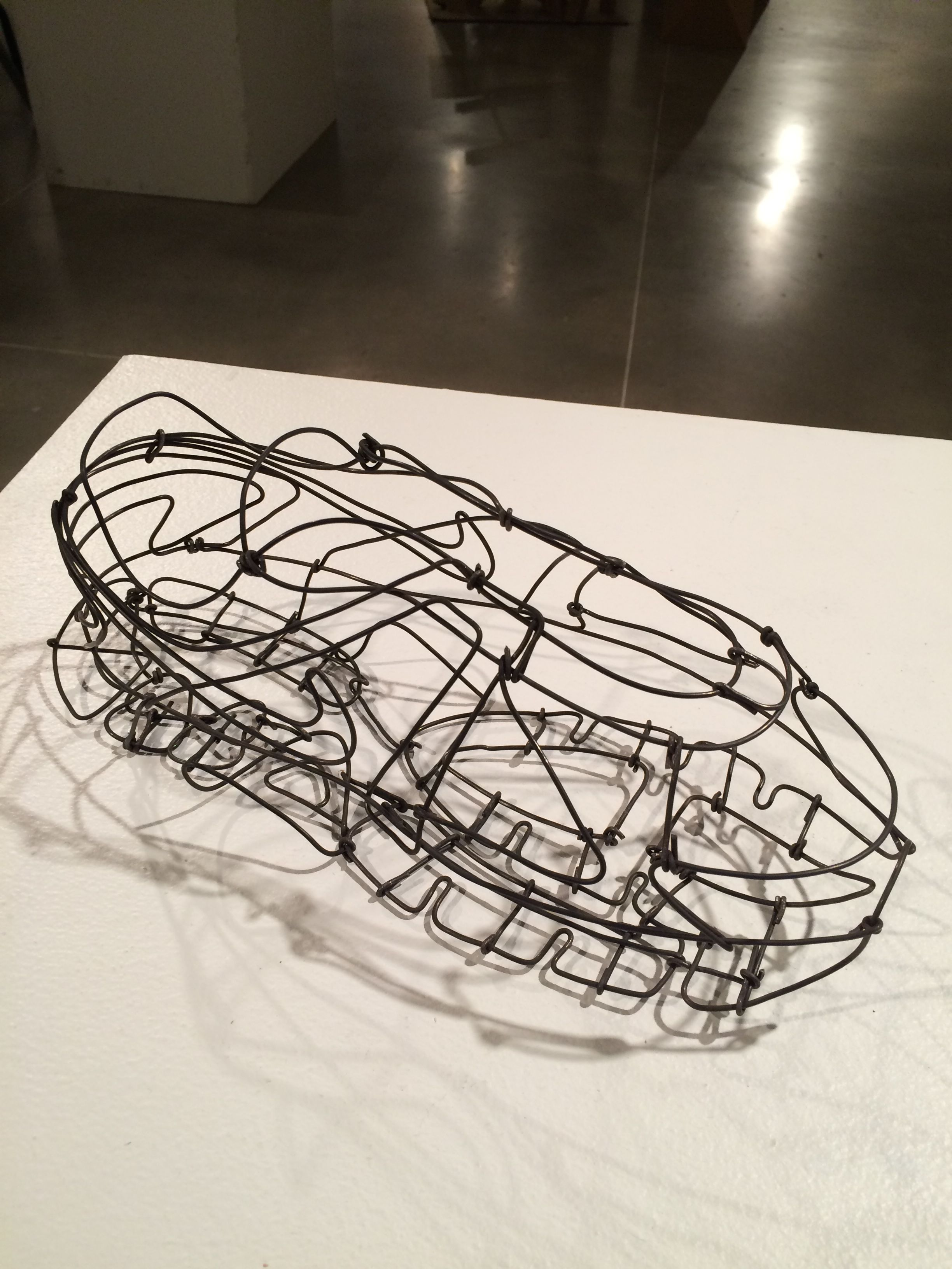 Wire Armature Assignment/Shoe