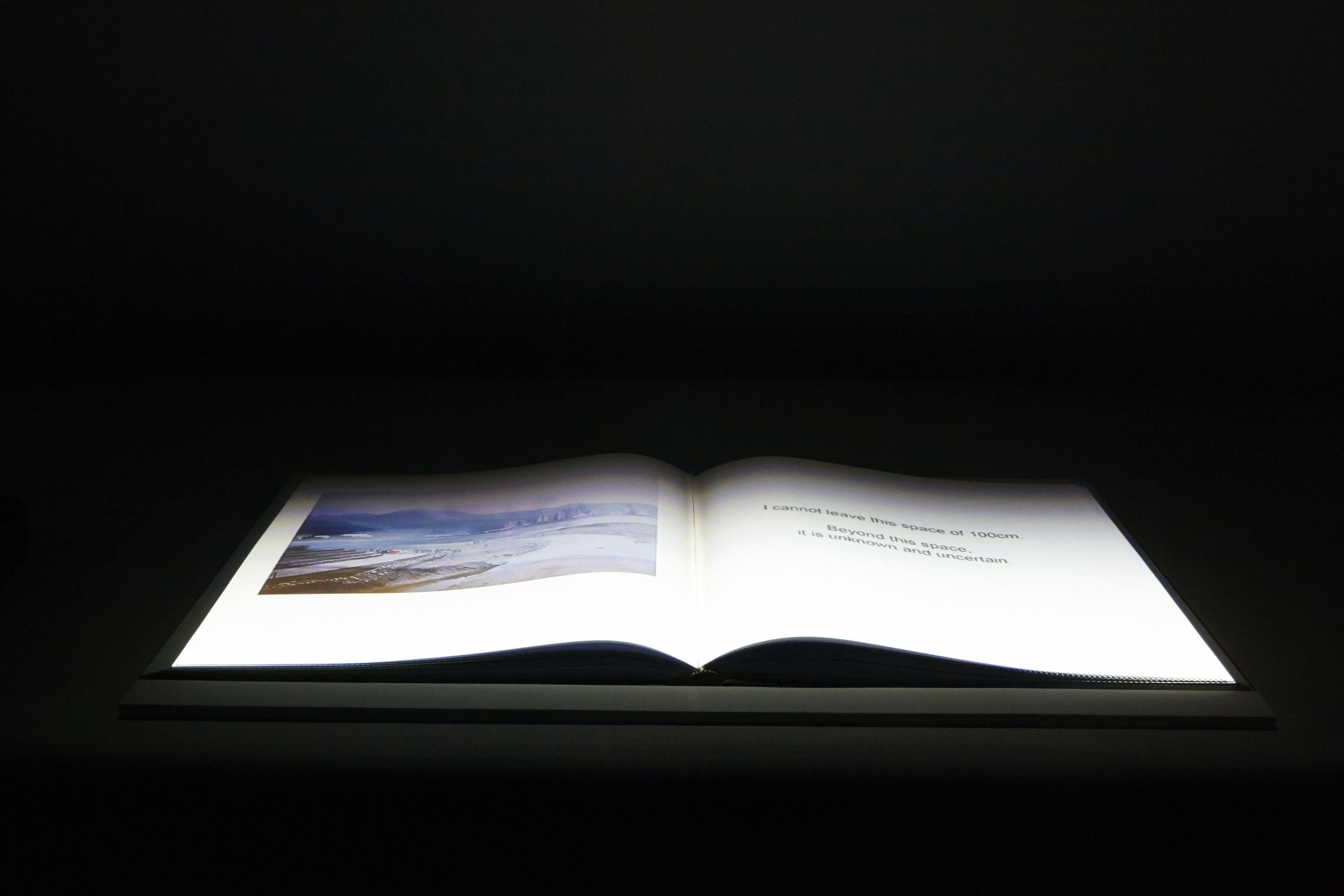 Unseen+Touch+Field+3_braille+Book.jpg