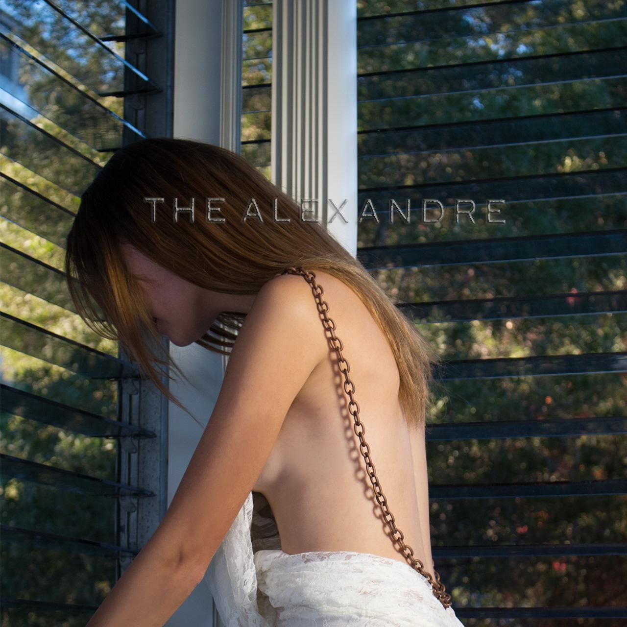 "Alexandre Dorriz,  Spring/Summer 2015 Ready-to-Wear , 2014. Archival Inkjet Print, 42"" x 42"".   www.thealexandre.com"