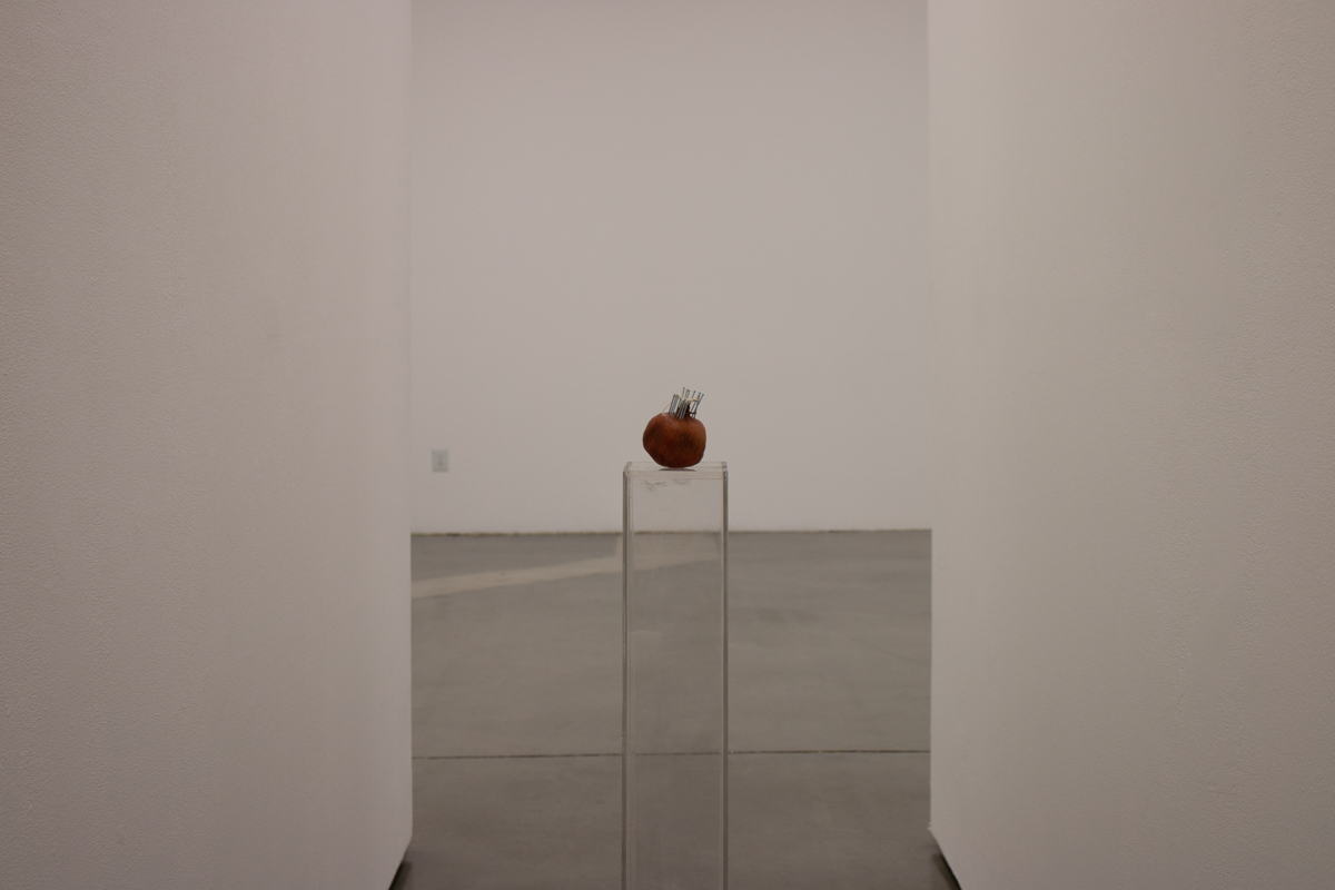 """""""Untitled (Wormhole 04)"""", Pomegranate (35°39'10.151"""" N 119°53'35.837), Stainless Steel Nails, Exposed Silk (2 Silkworm Cocoons exposed to YouTube search algorithm, """"Lawrence of Arabia"""" played continually for 10 days), 2 Plexi Pedestals. 2018."""