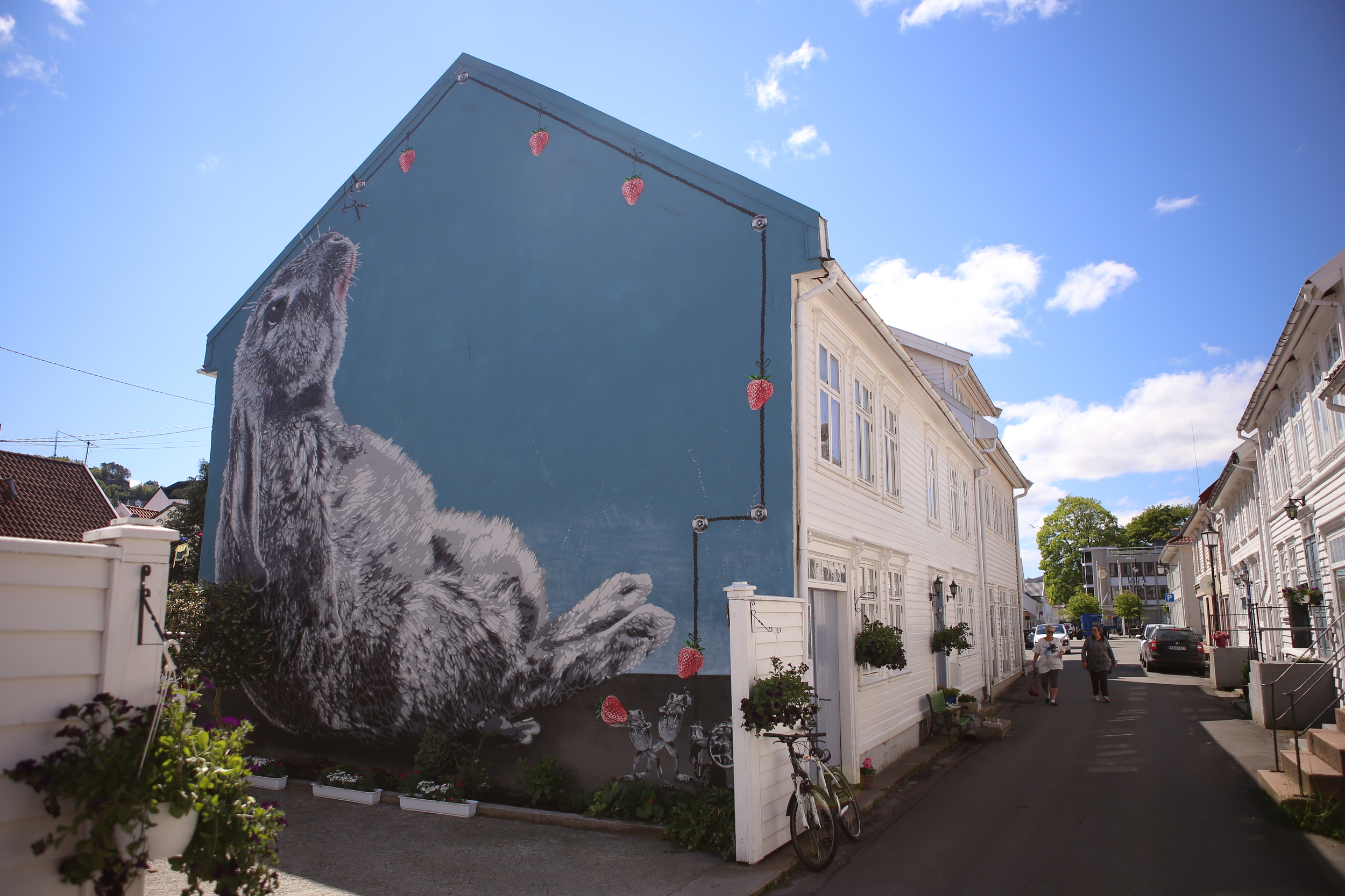 HOLLENDERBYEN. Foto: Simen Løvgren