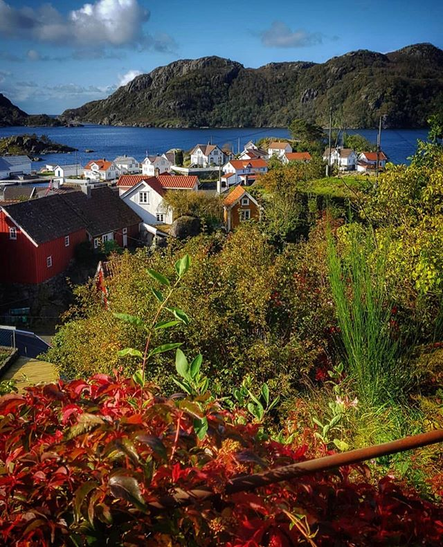 The autumn colours are in full bloom at Rasvåg. ❤️ Thanks for sharing this gorgeous shot @spaniaeva 🤩🤩👏👏