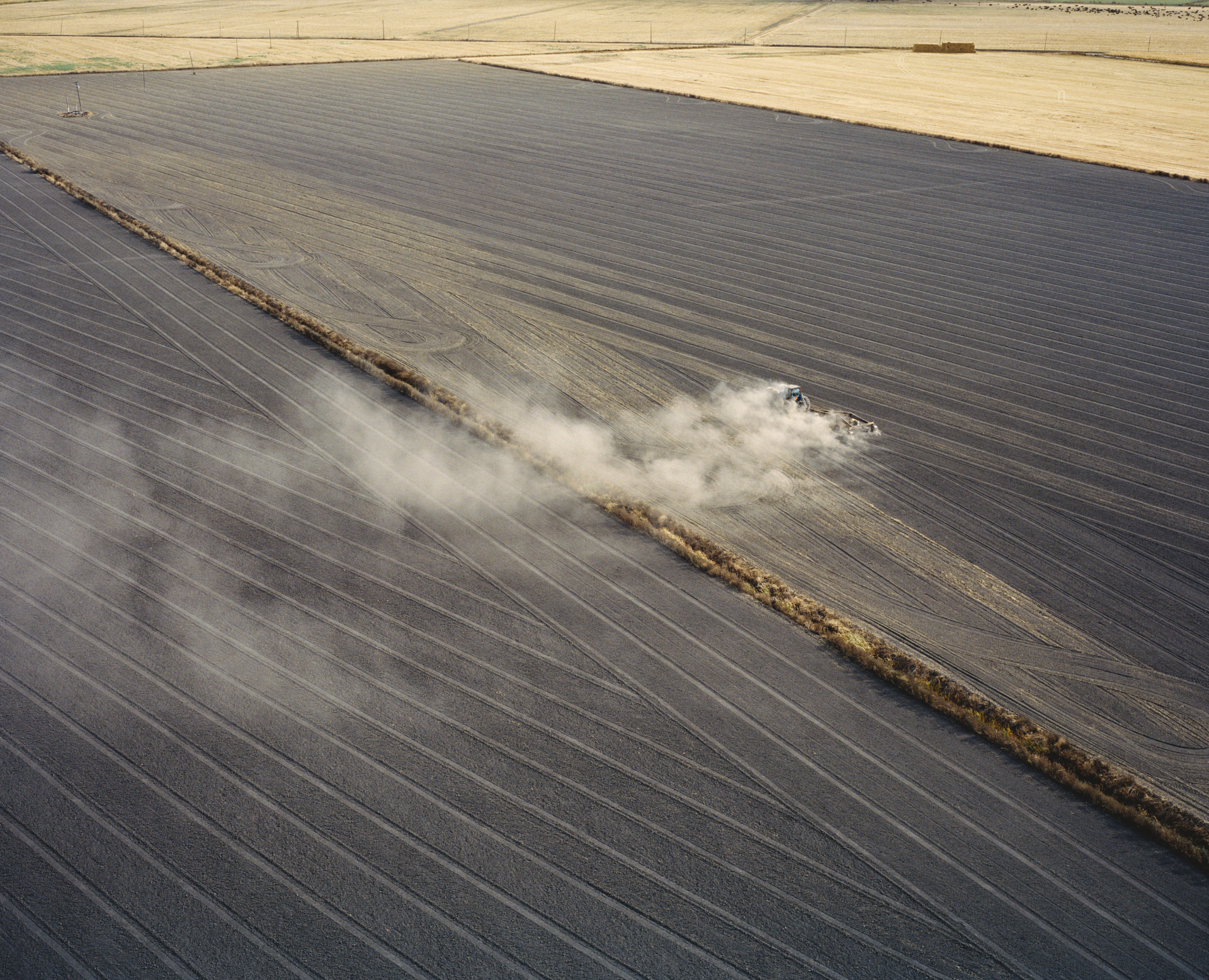 Agriculture fields near San Joaquin River. Central Valley, California, USA, 2015.